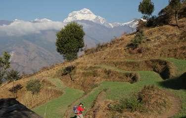 Annapurna Expedition
